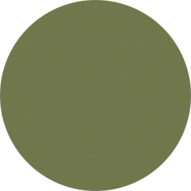 4567 - Olive green